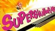 SUPERGIANT∞FLARE