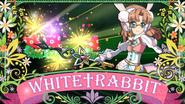 WHITE†RABBIT