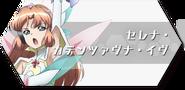 Serena XDU Thumbnail