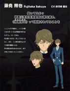 Symphogear Character Profile (Sakuya)