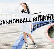 Cannonball Running 2