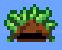 Herb Hat