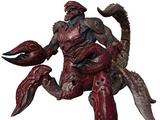 Adult Arachnoid