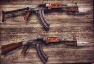 AK-47 T.E.O.R