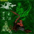 Arachnoid concept