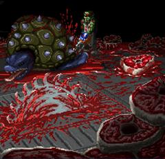 Infected Tortoise butchers