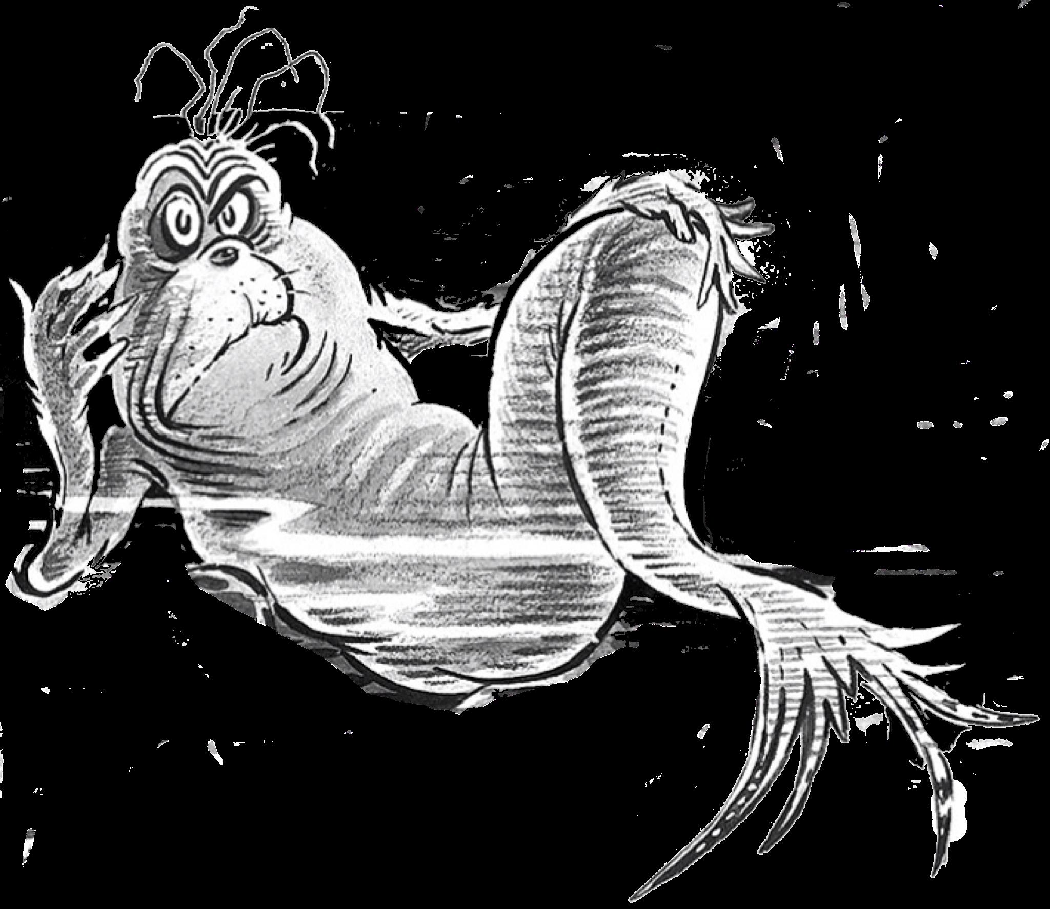 Grouchy Fish