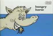 Hungry horse