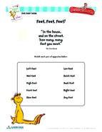 FOOT BOOK FeetFeetFeet
