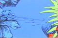 Horton Hears A Who (8)