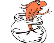 Dr-seuss-goldfish-clipart