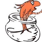 Dr-seuss-goldfish-clipart.jpg
