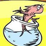Norval carlos fish.jpg