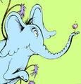 Horton clover