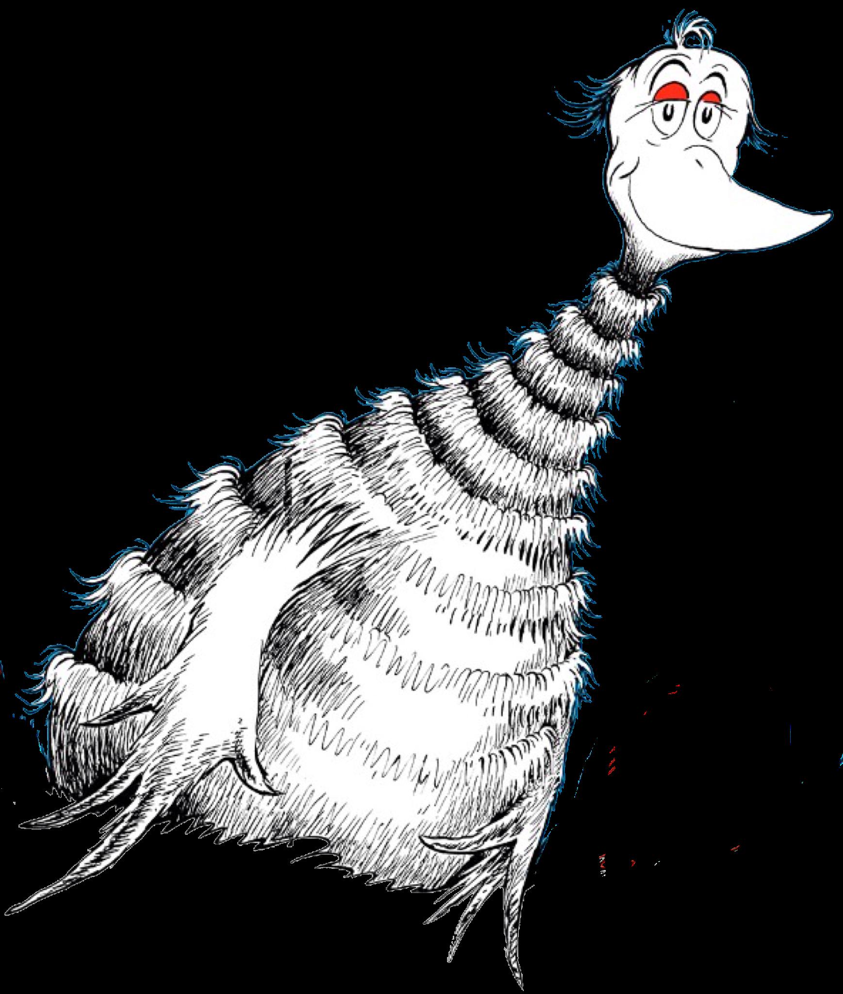 Ruffle-Necked Sala-ma-goox