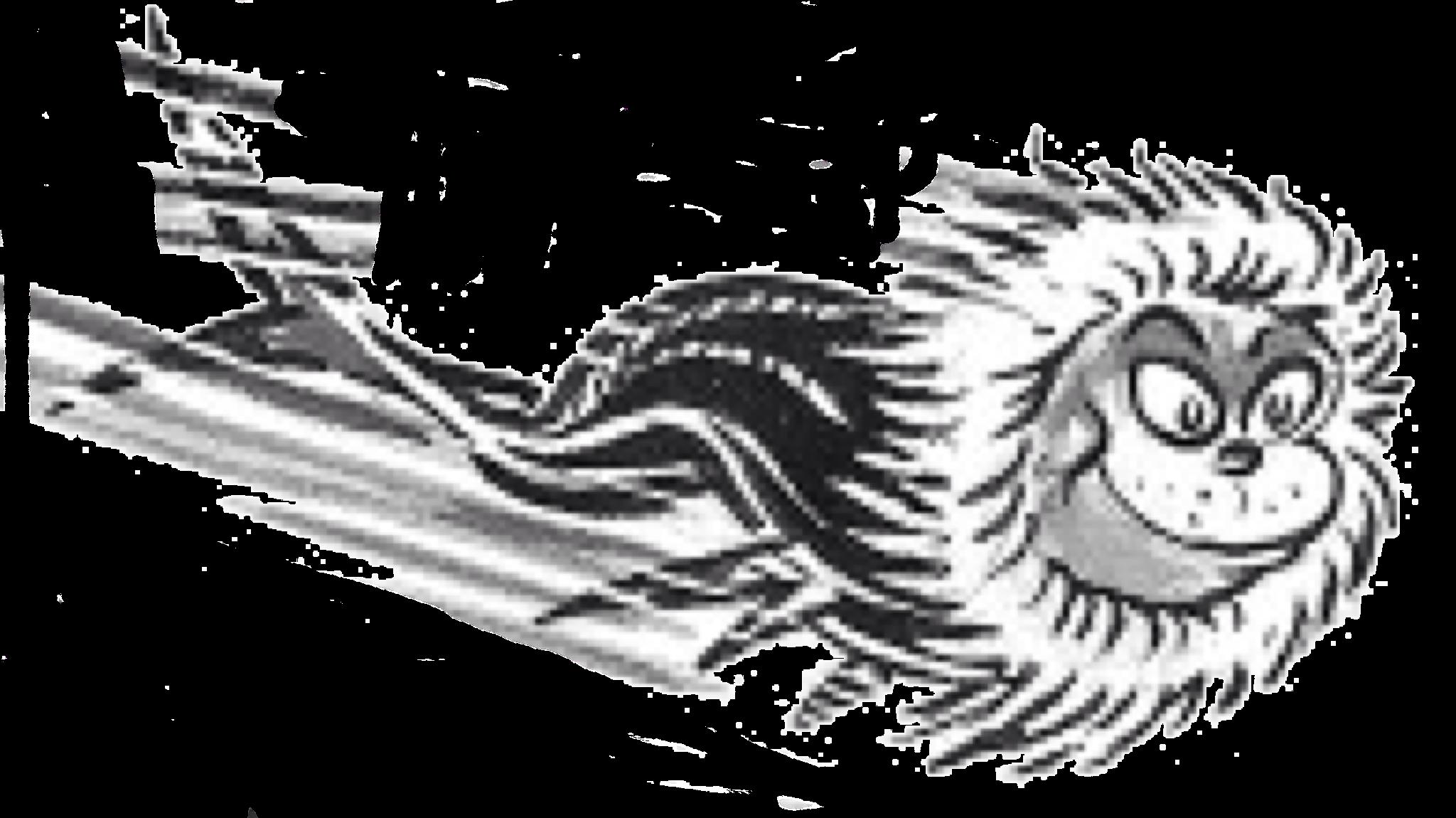 Eskimo Fish