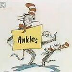 You can read about ankles.jpg