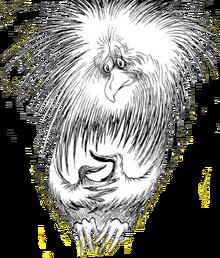 Twiddler Owl 1.PNG