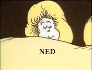 Ned sleeping