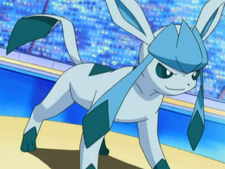 May's Glaceon.png