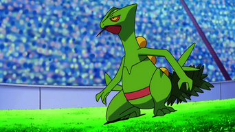 Ash's Sceptile.PNG