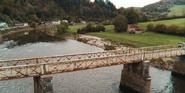302 Lily on a bridge