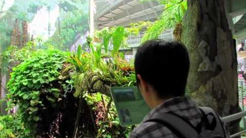 49_Seconds_of_the_California_Academy_of_Sciences
