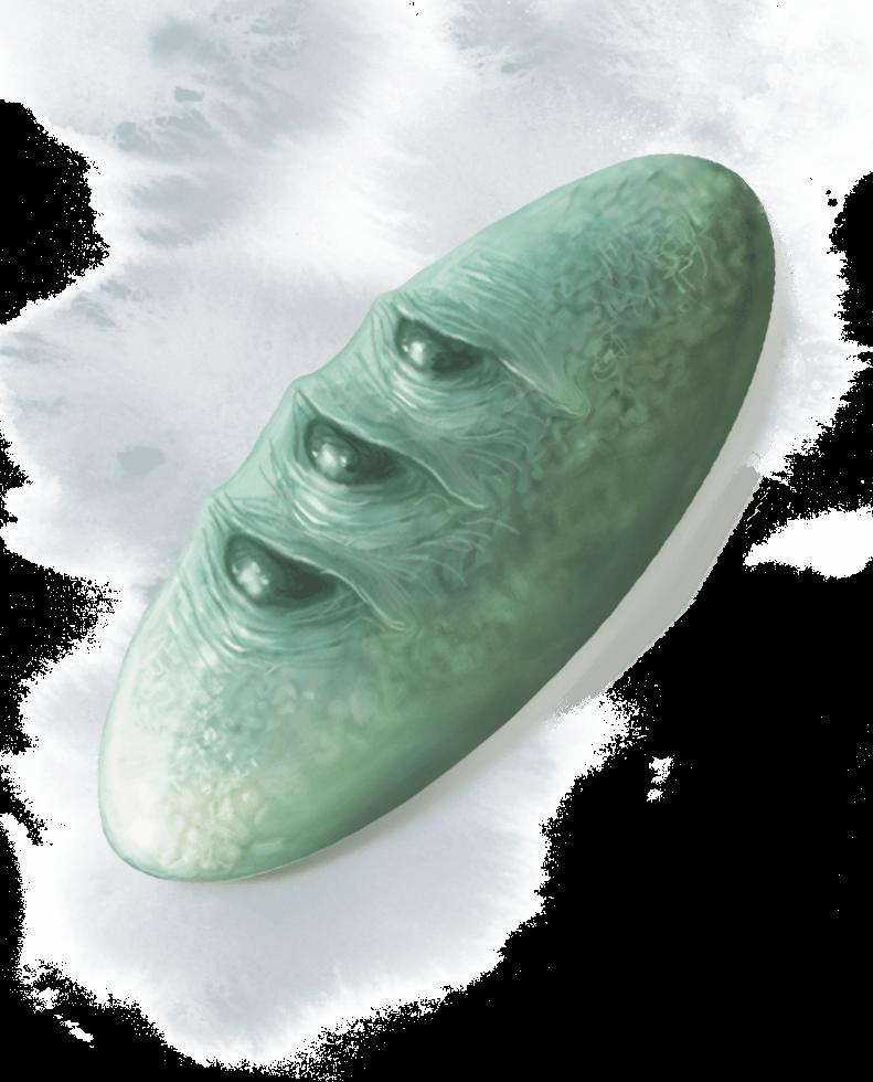Kamień Golorra
