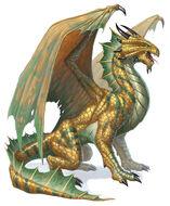 Bronze Dragon 5e