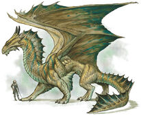Bronze Dragon 3e
