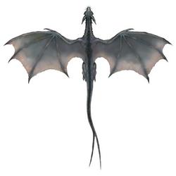 Gray Dragon wings
