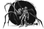 BotFK Grobowy pająk
