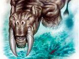 Tygrys morski