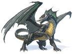 Black Dragon 5e