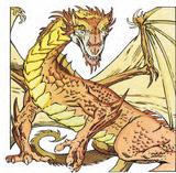 Bronze Dragon 2e