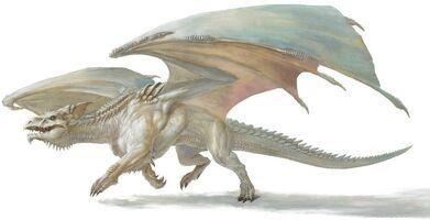 White Dragon 5e