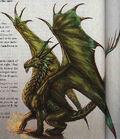 Tungsten Dragon