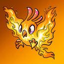 Pet Feuer Loderfleuch.jpg