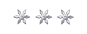 Ranged silver shurikens.png