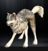 Wolf 02 1.jpg