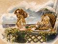 Lucia and carla illustration
