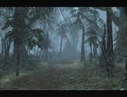 Forestofwind.jpg