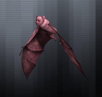 Peach Bat