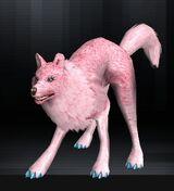 Wolf 05 1.jpg