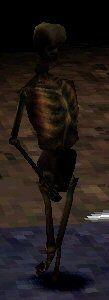 SkeletonAgame.jpg