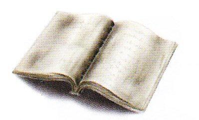 Guard's Diary