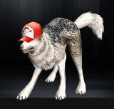 Wolf 10 1.jpg