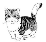 Codice- immagine Chairman Meow