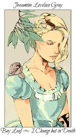 Virágos kártya Jessamine