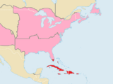 Cuban Syndicates (North America)